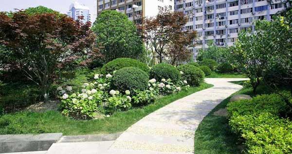 住宅绿化景观