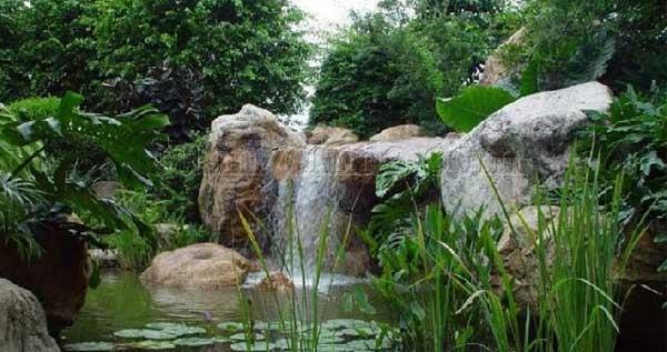 水体绿化景观