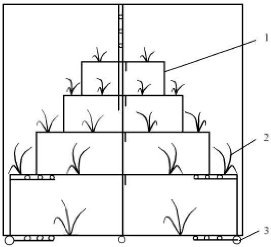 双排式组合架活动温室